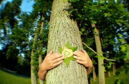 Tree Hugger Origins Of The Term