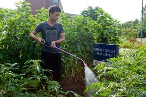 BlogPost-GardenPic