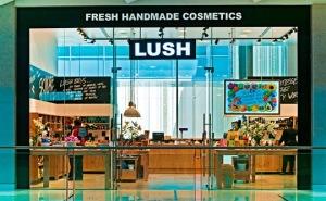 lush-cosmetics-store-540x334
