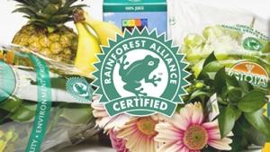 taken from rainforest-alliance.org