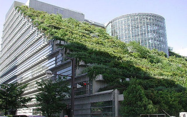 New France Law For Greener Rooftops
